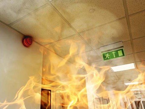Может ли пожарная сигнализация быть дешевой и насколько это вредно для бизнеса?